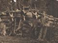 history_deer_hunt_1908_staf_crk